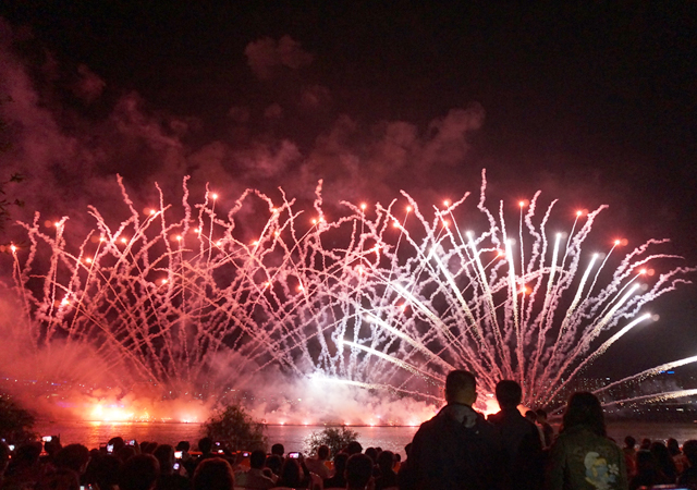 fireworks131007-11