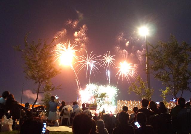 fireworks131007-5